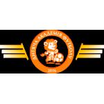 Детская Академия Футбола kaf.com.ua