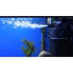 Что делает аквариумный фильтр?